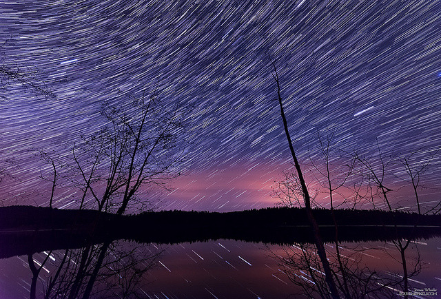 Many Star Trails by `James Wheeler on Flickr.