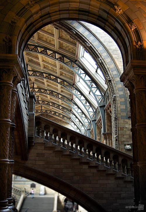 theblackworkshop:  Natural History Museum, London, UK (via Facebook)