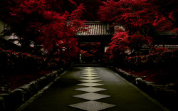 whodesignedit:  Nanzen-in by ~david-plus-1 An absolutely breathtaking photo of the Nanzen-in temple in Northern Higashiyama, Kyoto, Japan by Deviant Art user ~david-plus-1! Get a print of this beautiful photo over at Deviant Art.