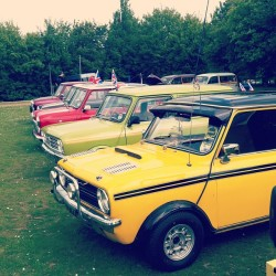 Minis at the car show on Sunday #carshow #hertscarshow #mini