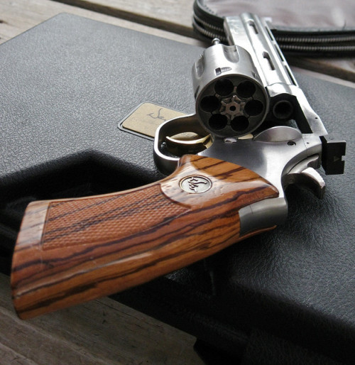 militaryandweapons:  Dan Wesson 357 rear view by Hizonic on Flickr.