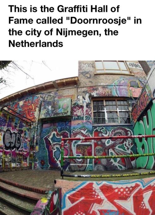 30 years of graffiti graffiti graffiti art layers art artists on tumblr paintings conservators netherlands art conservation AICCM doornroosje facebook post not mine