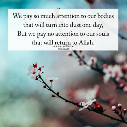 safina5 Islam Muslim Quran Allah islamic quotes islamic post islamic quote islamic reminder Muslimah human niqab islamic reminders safina5x ummah faith life love peace