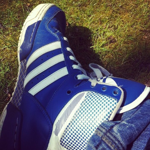 OP trainers #adidas #trainers #shoeaddiction