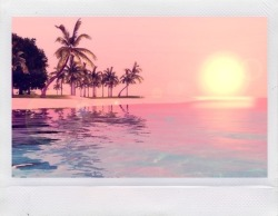 summer MY EDIT paradise water beach sand reflection waves palm trees sunset tropical summer blog tropical blog sun kissed water