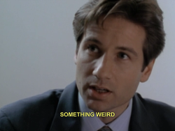 sci fi sci-fi science fiction FBI alien aliens UFO ufos The X Files mulder David Duchovny x files the x-files Fox Mulder xfiles the xfiles special agent xf rewatch xf revival x files revival the x-files revival the xfiles revival