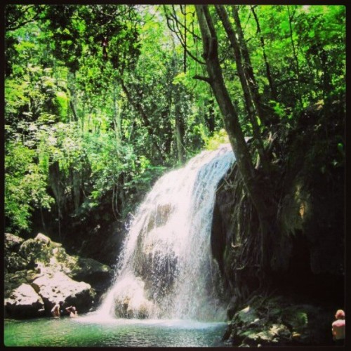 #Guatemala #hot #waterfall #swimming #in #the #middle #of #nowhere