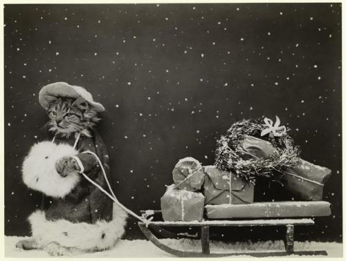 lostsplendor:  Christmas Greetings, 1914 via The New York Public Library