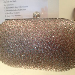 Sparkly clutch? Okay, thanks! (@accessorize_usa fall '13)