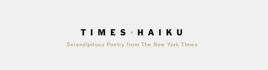 kateoplis:  Your Tumblr du Jour: Times Haiku
