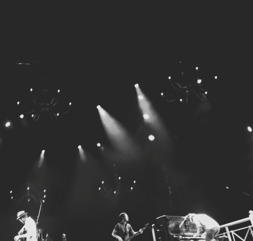 teresahou:  The Lumineers. Greek Theatre. April 2013