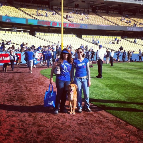 Samson treated his mom and abuela to a day at the ballpark as an early Mother's Day gift. #latergram #barkinthepark #dogstagram #dodgers (at Dodger Stadium)