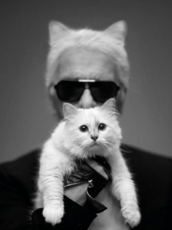 KARL KITTY