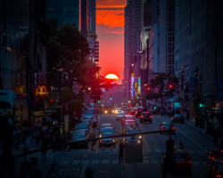 Manhattanhenge_8568 (by Punk Dolphin)
