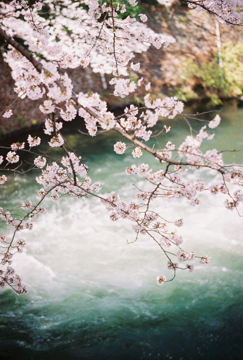 infinityc0re:  nosens:  (by mariposa.03)   ∞