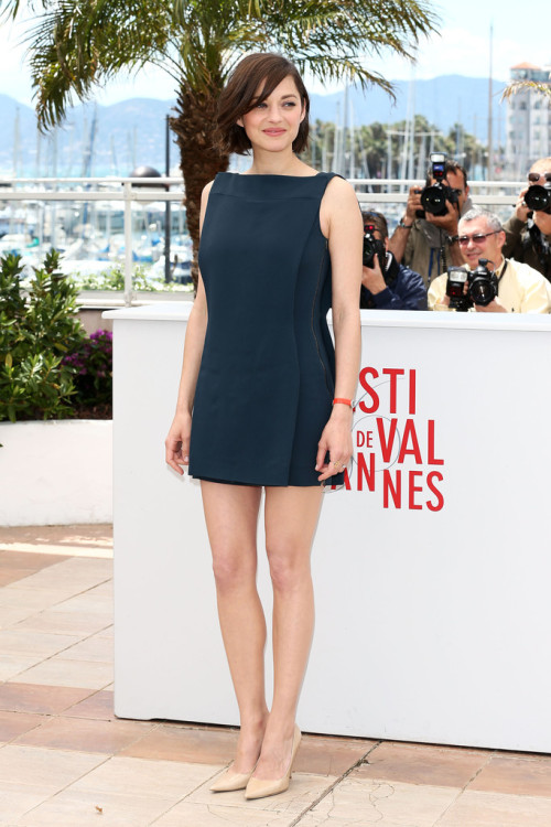 realmofthesenses:  Marion Cotillard in Antonio Berardi @ 'Blood Ties' Cannes Film Festival Photocall