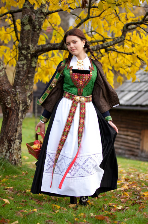 folkclothing:  Folk costume of Hardenger, Norway
