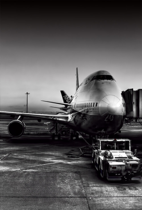 stopdreamingstartflying:  747 at the gate