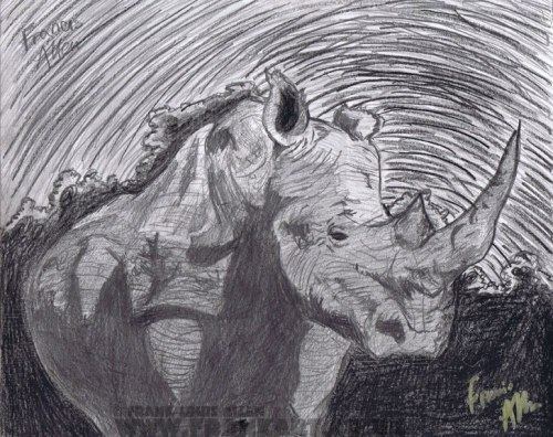 franksdailydoodle:  Storm Rhino by Frank Louis Allen All pieces are for sale just ask