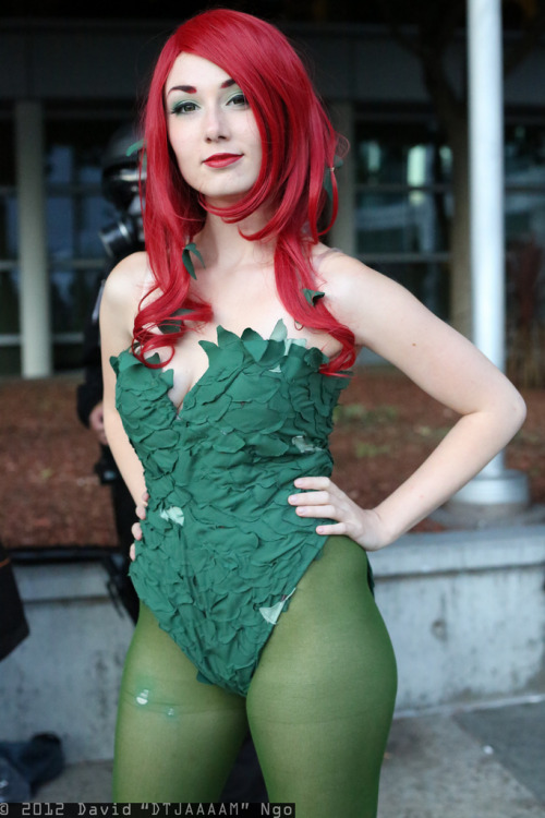 Poison Ivy (by DTJAAAAM)