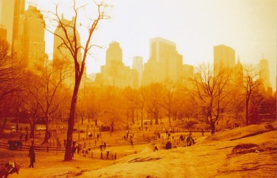 lomographicsociety:  Central Park taken on Redscale film