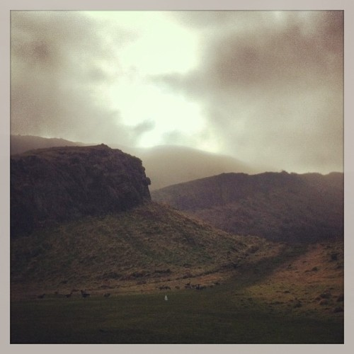 How was your walk to work today? (at Holyrood Park)