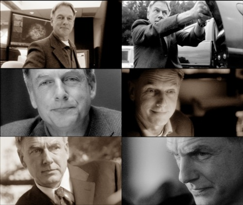 anothermentalist:  Gibbs Faces