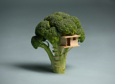 cjwho:  Broccoli House by Davis Brock  I wasn't able to build my son a treehouse, so I built him this broccoli house instead. Made with balsa wood.