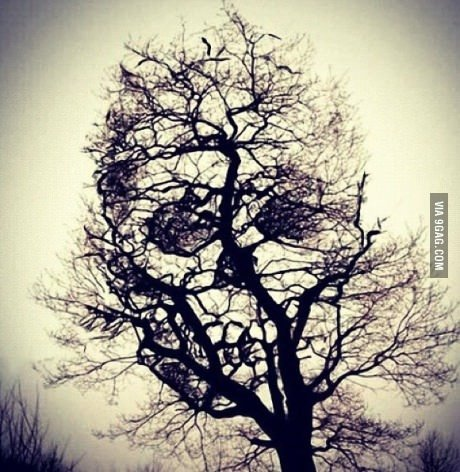 9gag:  Hmm… is this a sign?