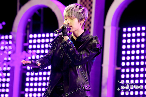 ©Petit Bandit | Do Not Edit.