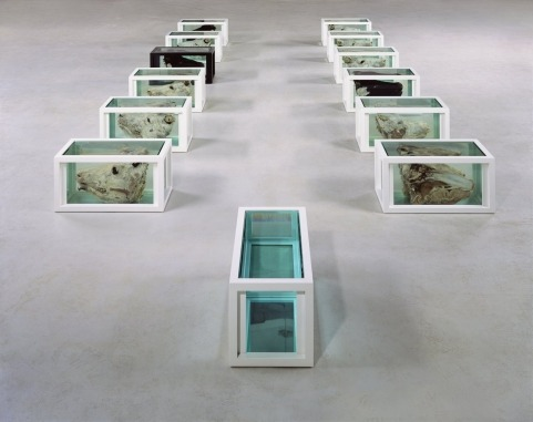 ephemeralol:  Damien Hirst Jesus and the Disciples1994-2003(x13) Each: 16 x 32 x 16 in. (40.6 x 81.3 x 40.6 cm)Steel, glass, paint, cows/bulls heads and formaldehydePhoto: Stephen White