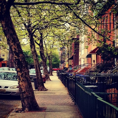 Today's commute to work. #hoboken #nj #sidewalk #walking #commute #outside #niceday #sunshine #trees (at Hoboken, NJ)