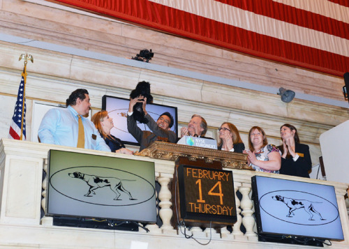Westminster winner Banana Joe visits the New York Stock Exchange on Thursday (Steven Vlasic/Getty Images)
