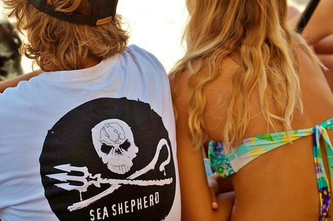 surferboianddollbaby:  Support  Sea Shepherd's work saving the Planets Marine Life by Supporting      http://www.se