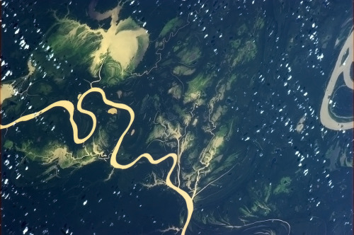 colchrishadfield:  The incredibly green lush wetness of the Amazon basin.  this should be a print on fabric.