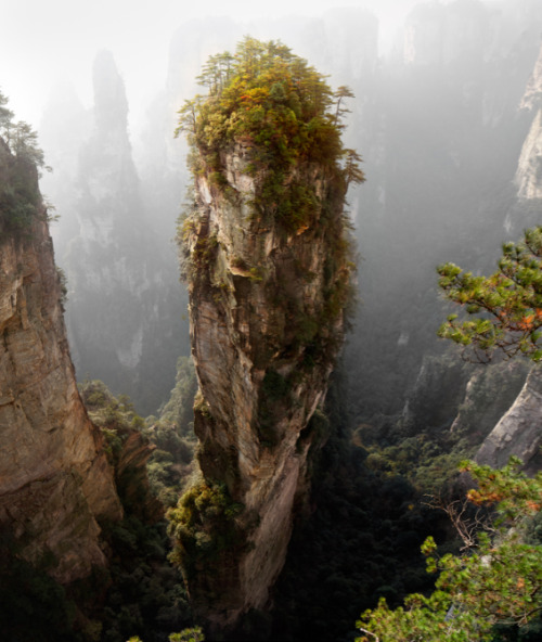 "Pandora by Yury Pustovoy ""I took this in Wulingyuan, in China's Hunan Province. This is a UNESCO World Heritage Site, where quartzite sandstone pillars – some over 800 metres high – tower into the sky."" Visit Yury's website. Image copyright Yosuke Kobayashi and used with permission. __ See the world's most inspirational images every Thursday in Photography Week. Get five free issues today at http://bit.ly/RHzJmN"