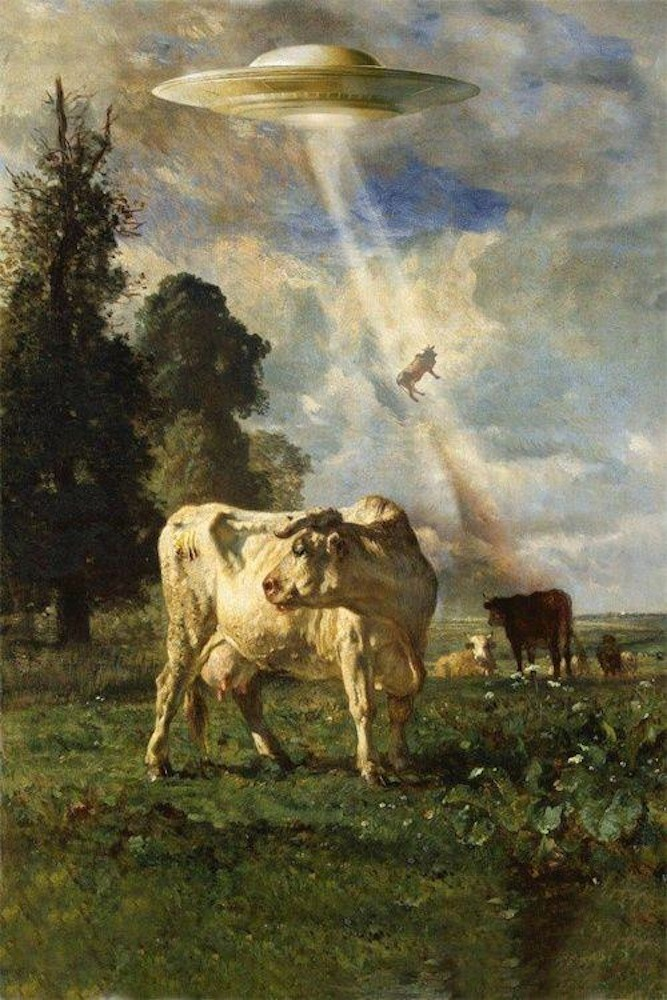 kadrey:  Cow Space Rapture