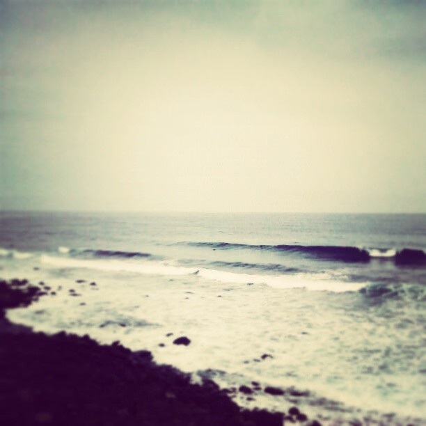 Next week plan… #surf  #grancanaria #surfing #wave