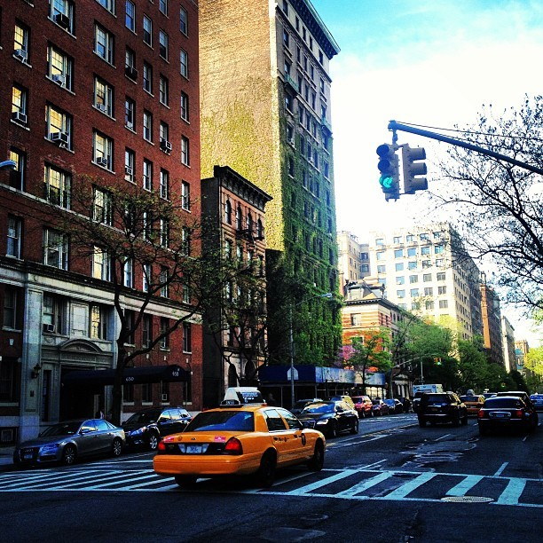 theramblingfangirl:  Loving the ivy on the buildings. #nyc #uws #newyorkcity