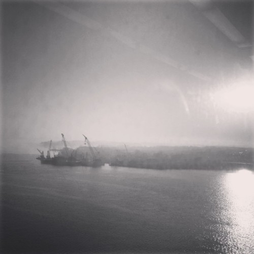 #foggy morning through a dirty #train window #blackandwhite