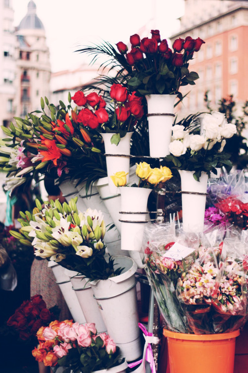 coffeeandlaugh:  Flower Market.