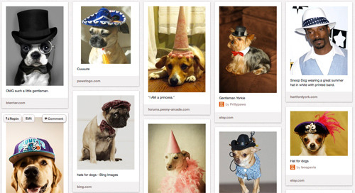 krollshow:  New PubLIZity Pinterest Board: Cuuute Dogs Wearing Hats  Hey, Kroll Show is on Tumblr! Click here to watch the PubLIZity sketch with Jenny Slate, then tune in to the series premiere next Wednesday at 10:30/9:30c.