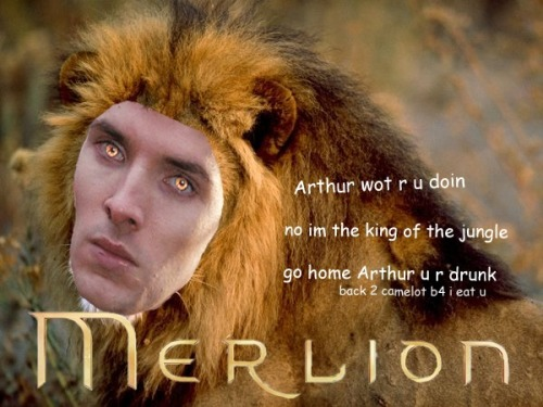 ifmerlin:  What If Merlin…was a lion?  what the actual fuck this fandom is officially going completely insane