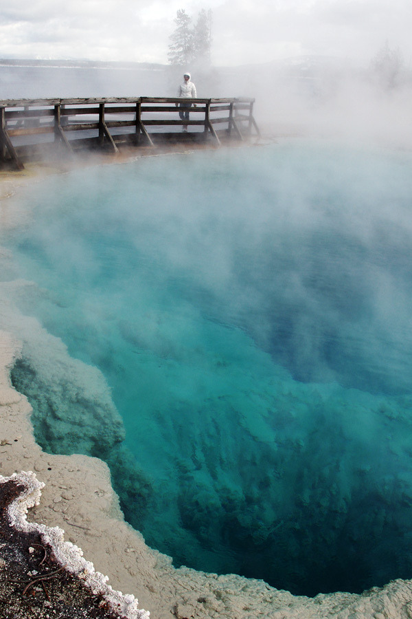 illusionwanderer:  Yellowstone National Park