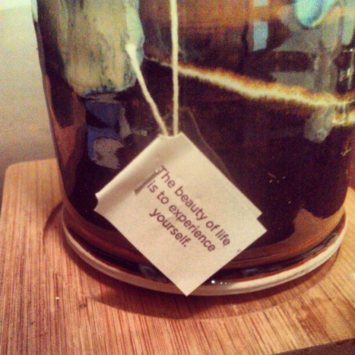 Wise #tea bag.