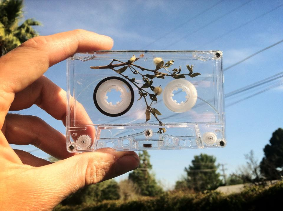 cantrelate:  gloosticks:  new GLOCHIDS cassette, creosote encased within   honestly i don't know this band at all but this