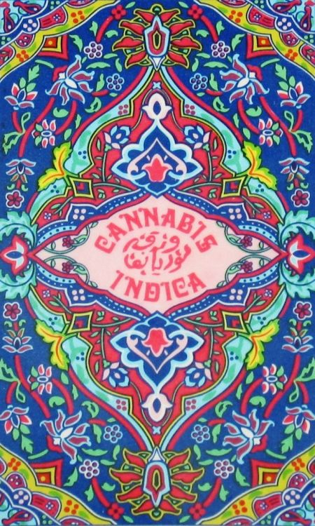 electripipedream:  Cannabis Indica1977