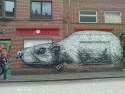 Rat in Doel by Belgian artist ROA, photo by Jahsonic.