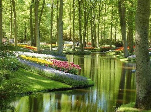 a-kind-of-utopia:  Keukenhof Gardens - Netherlands