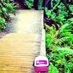 Trail time #sharethehealth #pokitdok